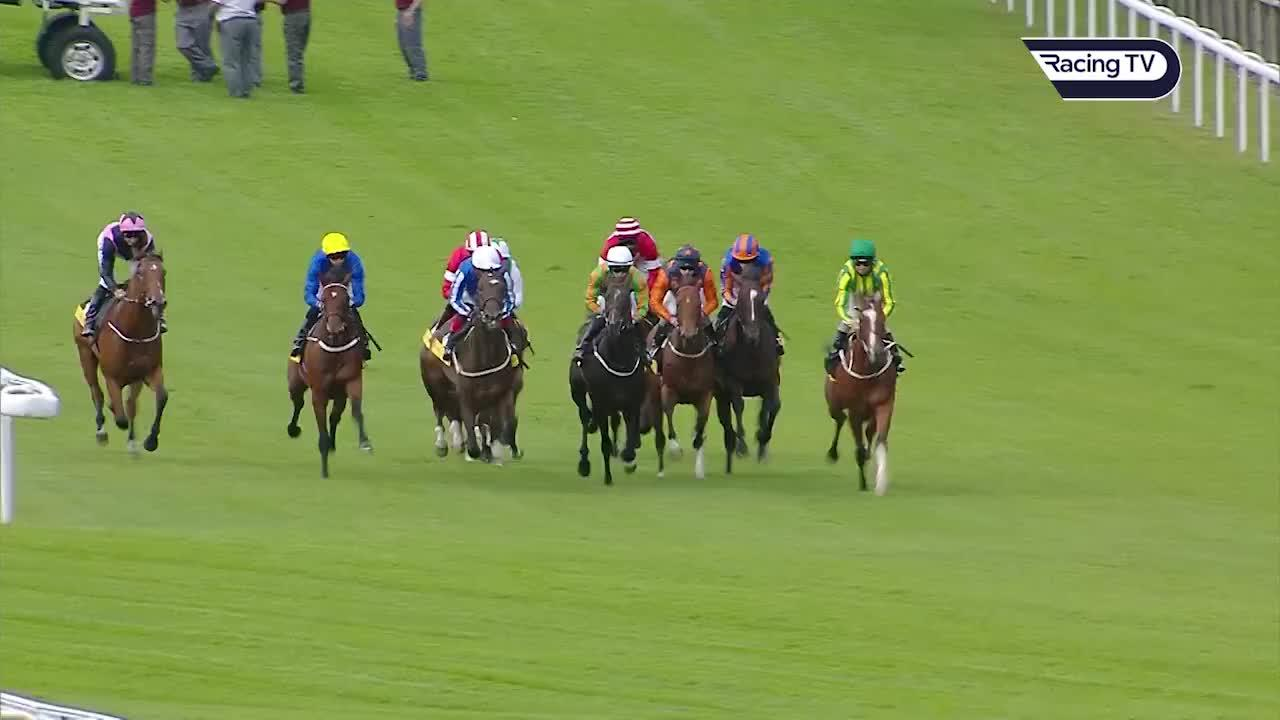 Betting 2000 guineas replay back and lay betting software sports