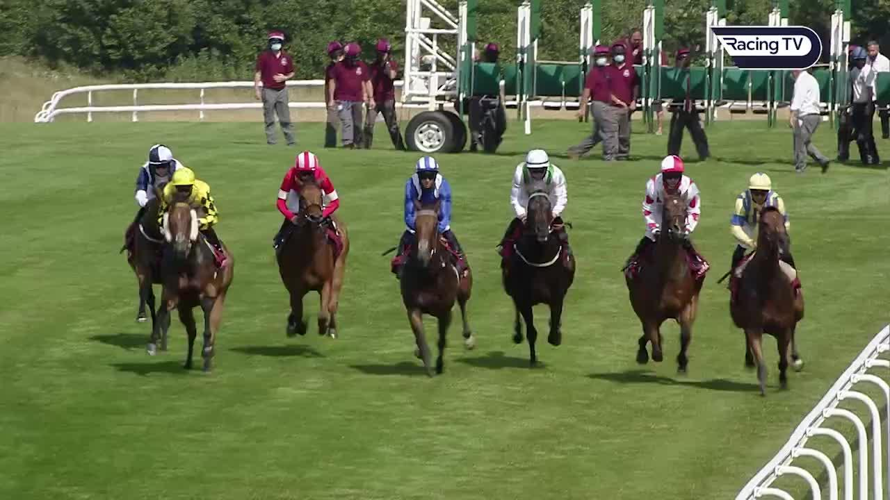Prix de l abbaye betting line johny hendricks vs carlos condit betting odds