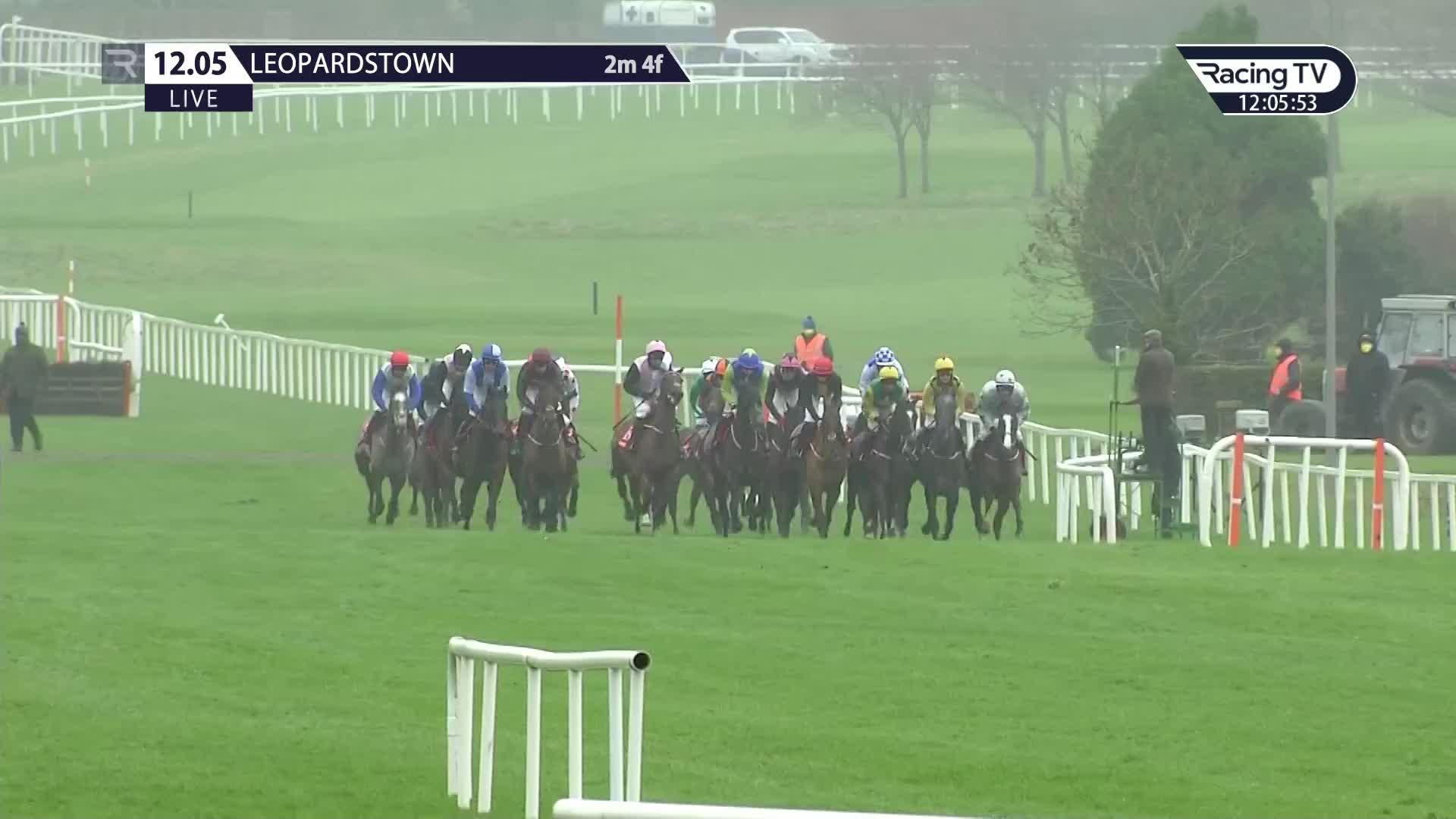 cheltenham supreme novices hurdle betting trends